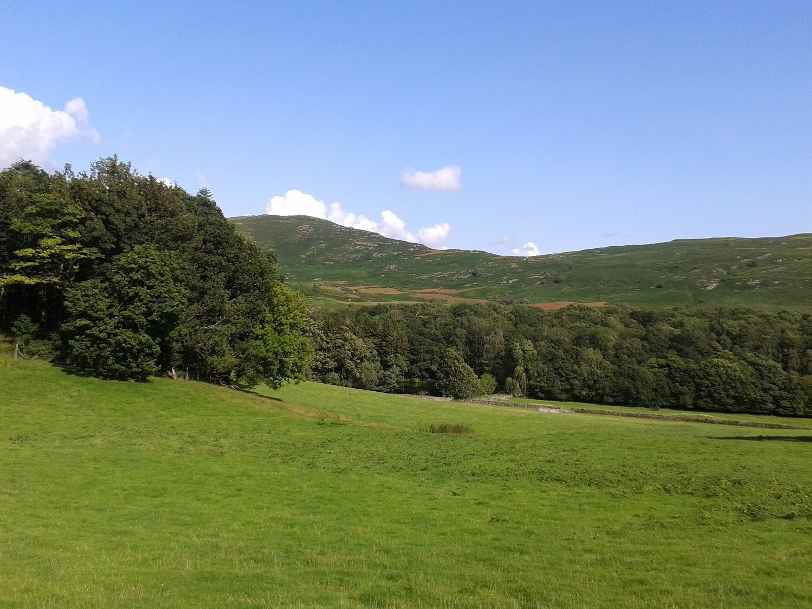 view to Woodland fell