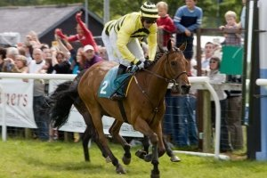 Cartmel Races Lakeland