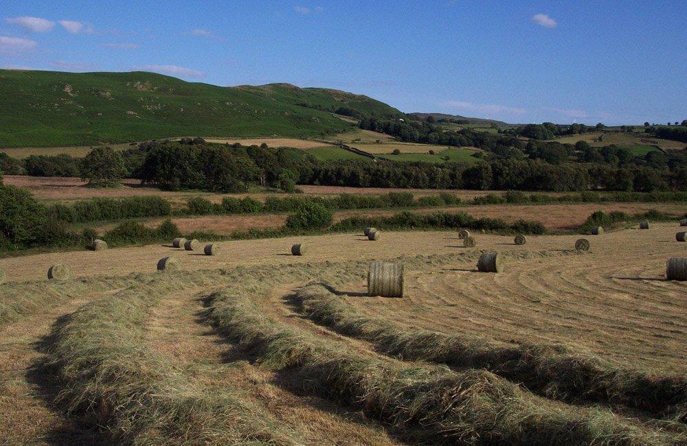 working farm holidays lake cumbria
