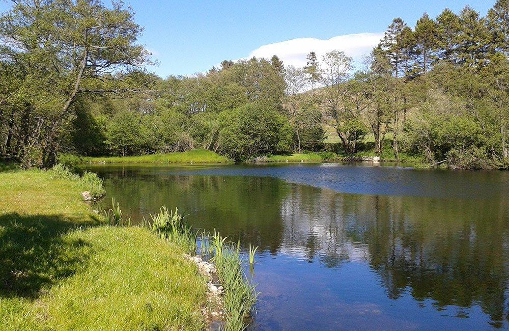 summer lake district tarn
